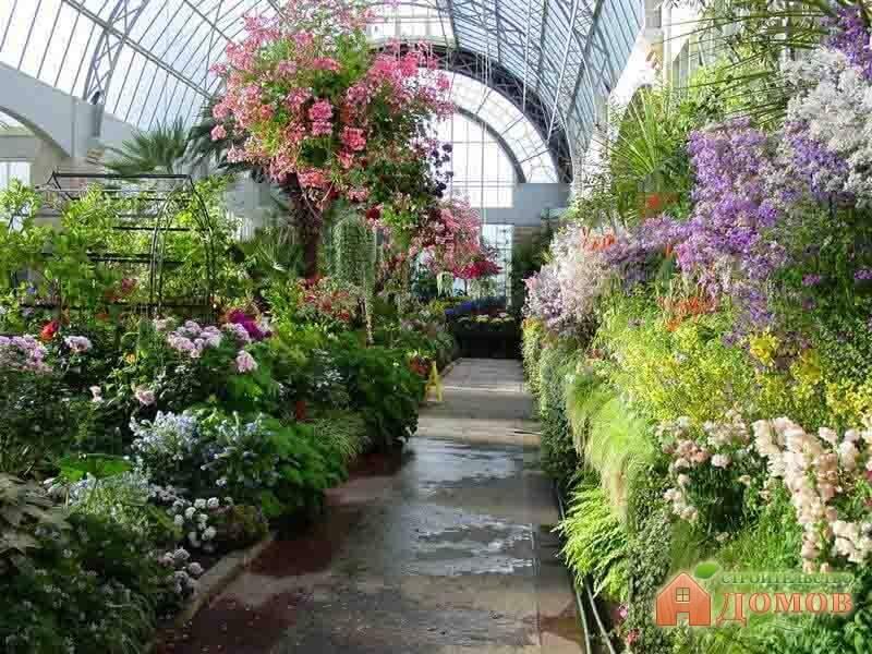 Планирование зимнего сада в квартире и частном доме